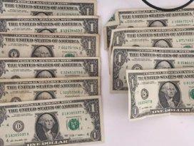 Midyat'ta 3 öğretmenin evinden 1 dolar çıktı