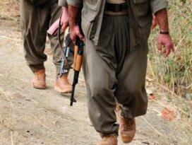 Terörist grubun Şemdinliye geldiği iddiasına açıklama