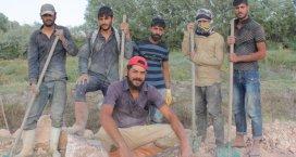 Türkiyedeki Suriyelilerden, Fırat Kalkanı harekatına destek