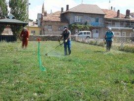 Beyşehir'in yeşil alanları yabani otlardan arındırılıyor