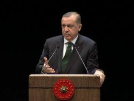 Cumhurbaşkanı Misak-ı Milli'ye işaret etti