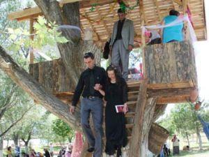 Kavak ağacında nikah kıydılar