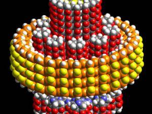 Selçuktan AB'ye Nanoteknoloji Projesi