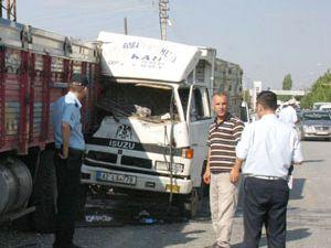 Hayvan yüklü kamyonet kamyona çarptı