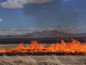Kulu da anız yangınları