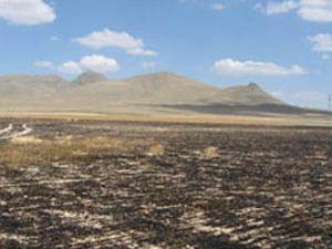 Konyada 400 dekar alan yandı