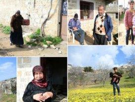 Afrinde terörden arındırılan köylerde geri dönüş sevinci