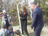 Millet kıraathanesi bahçesinde fidanlar toprakla buluştu