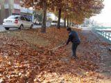 Beyşehir'de yaprak toplama mesaisi sürüyor