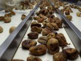 Türkiyenin kuru meyve ihracatı 700 milyon doları aştı