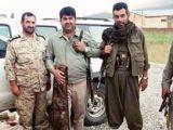 İran PKK ile kol kola!